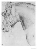 Head of a Horse Giclée-tryk af Antonio Pisani Pisanello