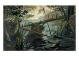Indians Using a Fallen Tree-Trunk to Cross the Rio Paraiba Do Sul Giclee Print by Jean Baptiste Debret