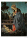 Madonna Worshipping the Child, circa 1477-80 Giclee Print by Filippino Lippi