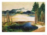 Lake in the Woods Giclee Print by Albrecht Dürer