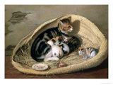 Cat with Her Kittens in a Basket, 1797 Giclee Print by Samuel de Wilde