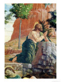 Agony in Garden, Left Hand Predella Panel from the Altarpiece of St. Zeno of Verona, 1456-60 Giclee Print by Andrea Mantegna