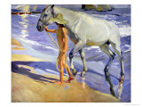 Washing the Horse, 1909 Giclee Print by Joaqu&#237;n Sorolla y Bastida
