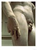 David by Michelangelo Buonarroti, 1501-04 Giclee Print