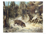 Wild Boar in the Snow, Signed as Courbet Giclee Print by Cherubino Pata