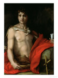 St. John the Baptist Giclee Print by Andrea del Sarto 