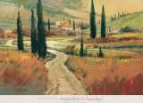 September in Tuscany I Póster por David W. Jackson