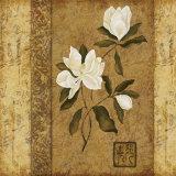 Magnolia Stripe II Poster by Gene Ouimette