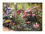 Jardín de un día de verano II Pósters por Heidi Coutu