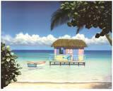 Island Hut Prints by Daniel Pollera