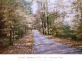 Autumn Path Poster by Diane Romanello