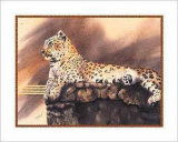 Lounging Leopard Posters by Nancy Azneer