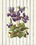 Striped Botanical Violet Art par Jerianne Van Dijk