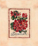 Vintage Geranium Prints by Jerianne Van Dijk