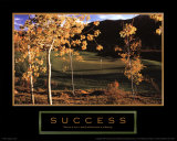Success: Golf II Print