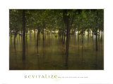 Revitalize: Forest Posters by Sharon Woodruff