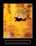 Success: Autumn Leaf Poster by Craig Tuttle