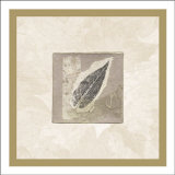 Elm Leaf Print by Diane Kline