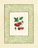 Cherries Poster by Linda Casey