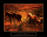 Spirit: Horses Print