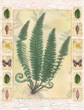 Forest Sword Fern Posters by Walter Robertson