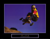 Risk: Mountain Boarder Poster