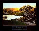 Drive: Golf II Posters