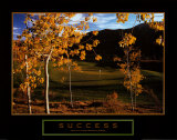 Success: Golf Posters
