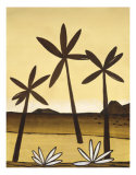Mexican Desert II Prints by Dominique Gaudin