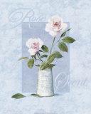 Rosa Poster von T. C. Chiu