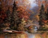 Woodland Splendor Prints by T. C. Chiu