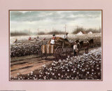 Cotton Pickers Print