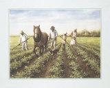 Plowing the Soil Prints