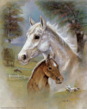 Dapple Mare and Fowl Posters by Ruane Manning