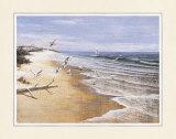 Seemöwen an einem einsamen Strand Kunstdruck von T. C. Chiu