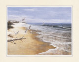 Deserted Beach with Seagulls Poster by T. C. Chiu