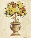 Yellow and Orange Rose Topiary Posters by Maxine Johnston