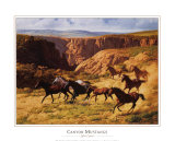 Canyon Mustangs Prints by John Leone