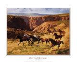 Canyon Mustangs Prints by John Leone