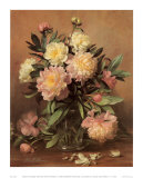 Pink and White Peonies Poster by Albert Williams