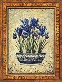 Iris Reticulata Posters by Richard Henson