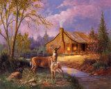 Cerfs à côté d'une cabane Posters par M. Caroselli