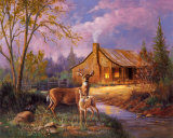 Deer Near Cabin Posters by M. Caroselli