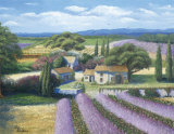 Lavender Fields Art by Jackie Thompson