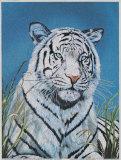 Tiger in Wild Art by  Hoss