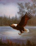 Eagle Fishing Posters by M. Caroselli