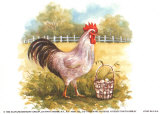 Hen with Basket Posters by Peggy Thatch Sibley