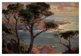Lonely Headlands, Point Lakes Prints by Franz Arthur Bischoff