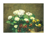 Hydrangea and Pansies Posters by Henri Fantin-Latour