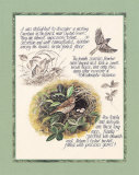 Bird Study Prints by Michelle Mara